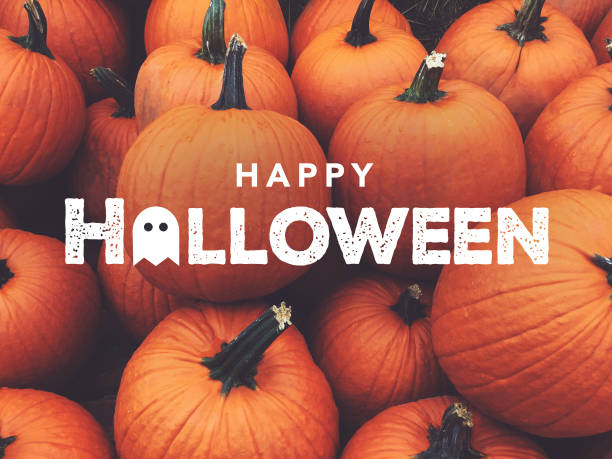 Halloween at Willowgate | Willowgate Activity Centre